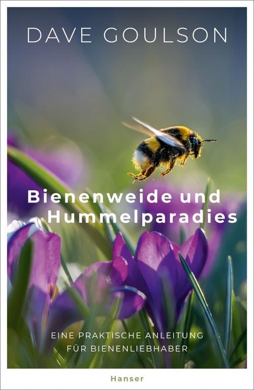 Dave Goulson, Bienenweide und Hummelparadies